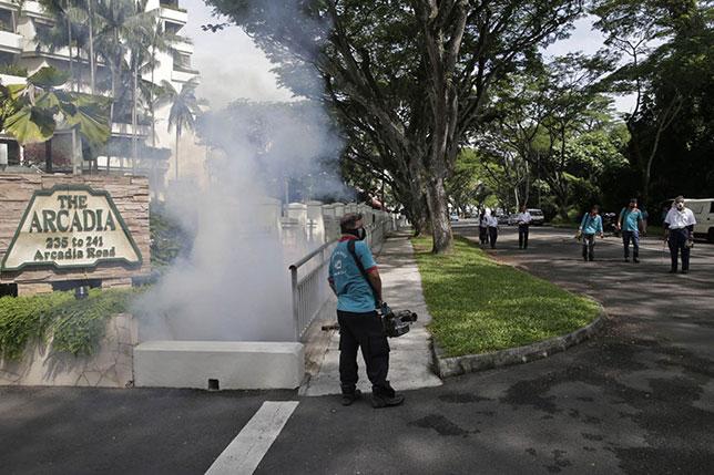 На улицах и в парках Сингапура интесивно распыляются инсектициды, фото Todayonline