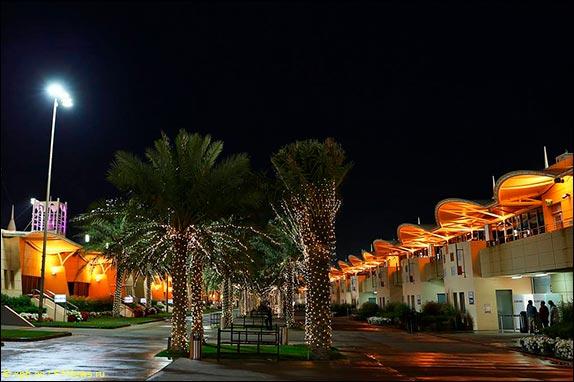 Ночной паддок в Бахрейне