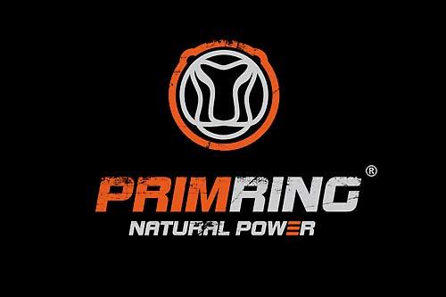 Логотип Primring