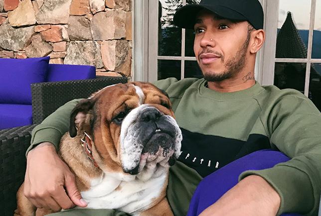 Льюис Хэмилтон и его собака Роско