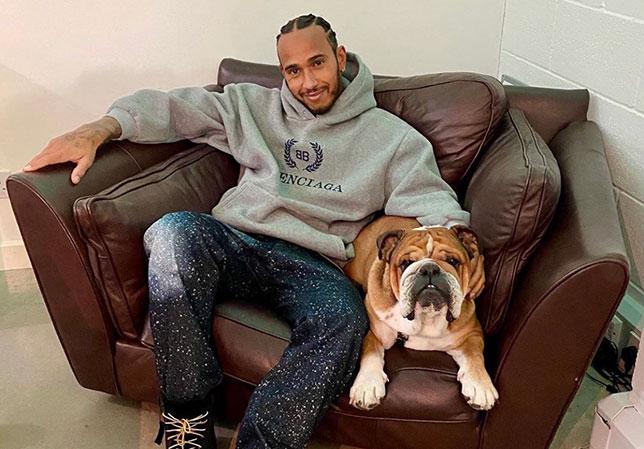 Льюис Хэмилтон и его собака Роско, фото из Twitter семикратного чемпиона мира