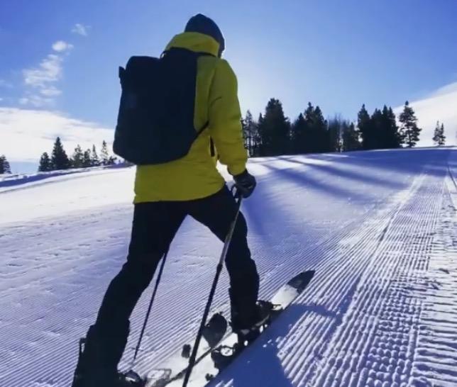 Льюис Хэмилтон на лыжной прогулке